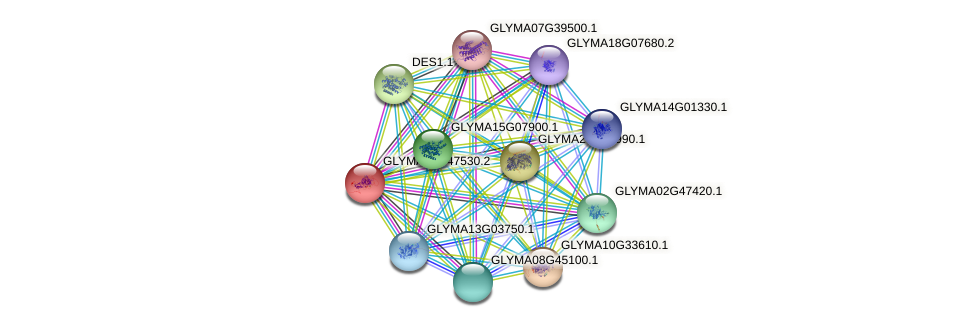 GLYMA06G47530.2 protein (Glycine max) - STRING interaction network