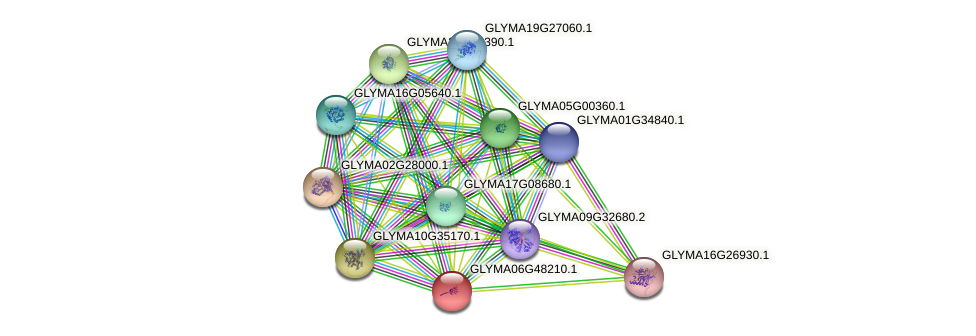 GLYMA06G48210.1 protein (Glycine max) - STRING interaction network