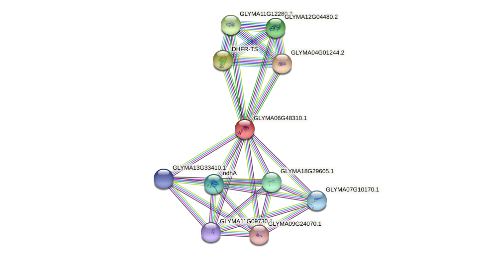GLYMA06G48310.1 protein (Glycine max) - STRING interaction network