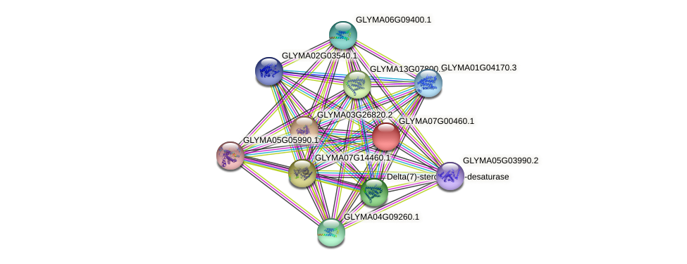 GLYMA07G00460.1 protein (Glycine max) - STRING interaction network