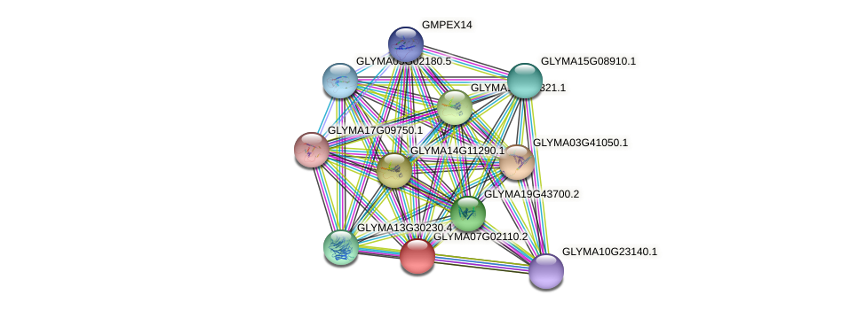 GLYMA07G02110.2 protein (Glycine max) - STRING interaction network
