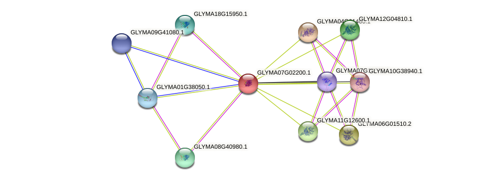 GLYMA07G02200.1 protein (Glycine max) - STRING interaction network