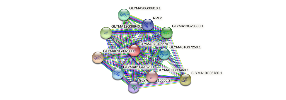 GLYMA07G02270.1 protein (Glycine max) - STRING interaction network