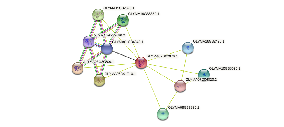 GLYMA07G02970.1 protein (Glycine max) - STRING interaction network