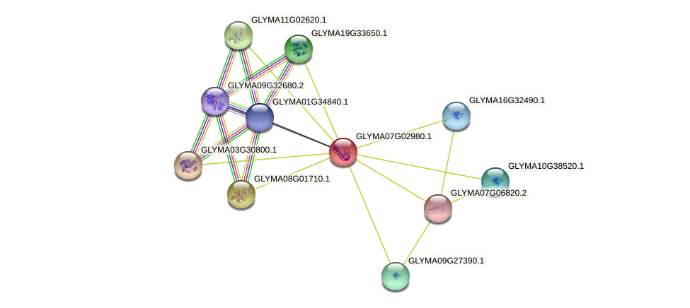 GLYMA07G02980.1 protein (Glycine max) - STRING interaction network