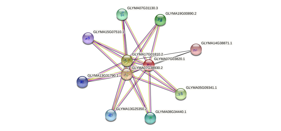 GLYMA07G03820.1 protein (Glycine max) - STRING interaction network