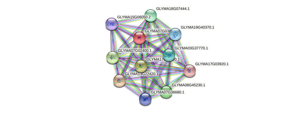 GLYMA07G03831.1 protein (Glycine max) - STRING interaction network