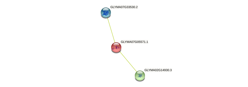 GLYMA07G05571.1 protein (Glycine max) - STRING interaction network