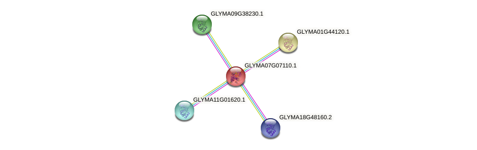 GLYMA07G07110.1 protein (Glycine max) - STRING interaction network