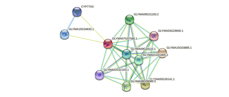 GLYMA07G07580.1 protein (Glycine max) - STRING interaction network