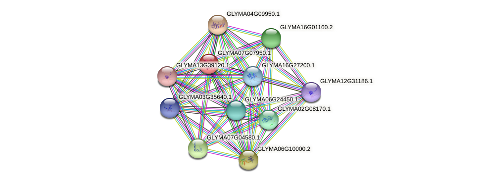 GLYMA07G07950.1 protein (Glycine max) - STRING interaction network