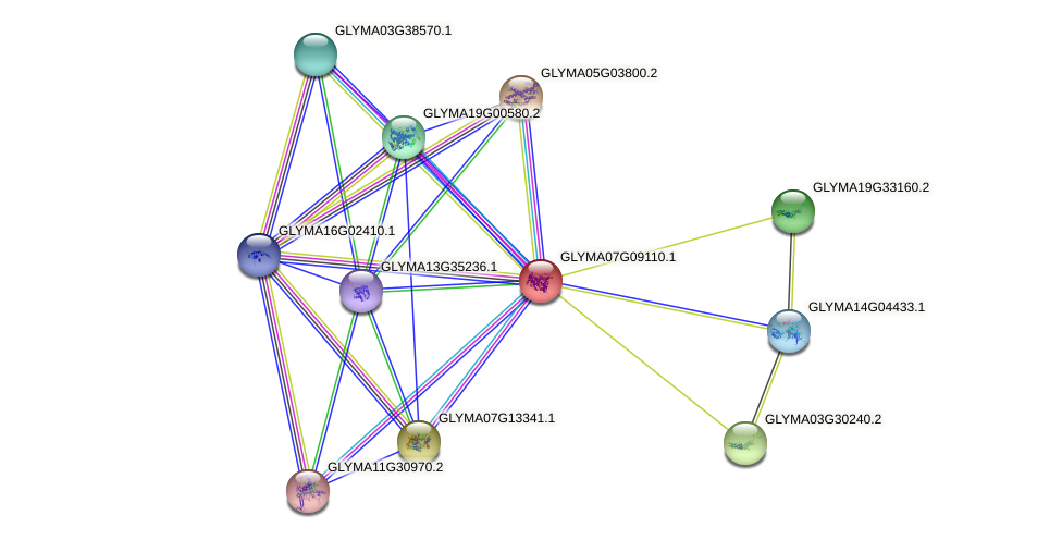 CYP76E3 protein (Glycine max) - STRING interaction network