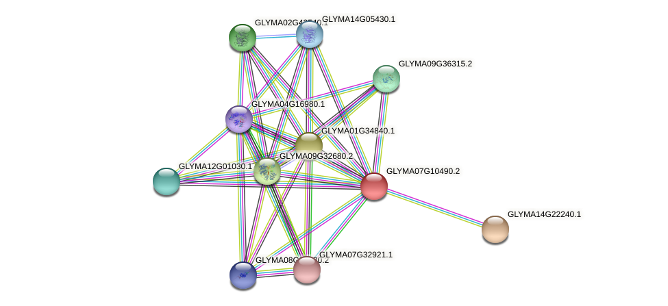 GLYMA07G10490.2 protein (Glycine max) - STRING interaction network