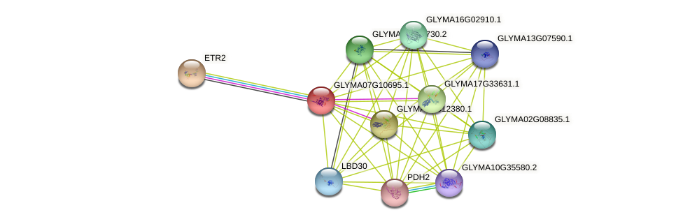 GLYMA07G10695.1 protein (Glycine max) - STRING interaction network