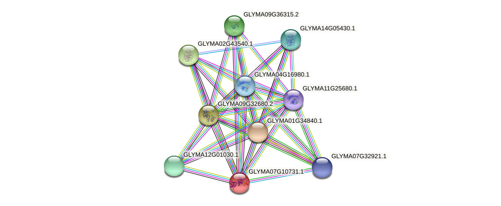 GLYMA07G10731.1 protein (Glycine max) - STRING interaction network