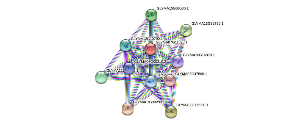 GLYMA07G11690.1 protein (Glycine max) - STRING interaction network