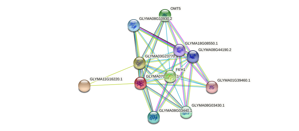 GLYMA07G12210.1 protein (Glycine max) - STRING interaction network