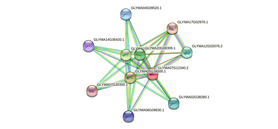 GLYMA07G12340.2 protein (Glycine max) - STRING interaction network