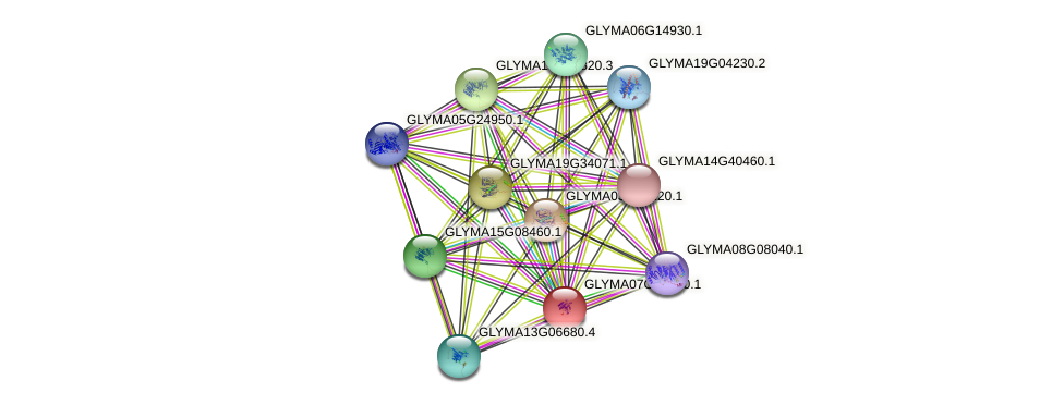 GLYMA07G12610.1 protein (Glycine max) - STRING interaction network
