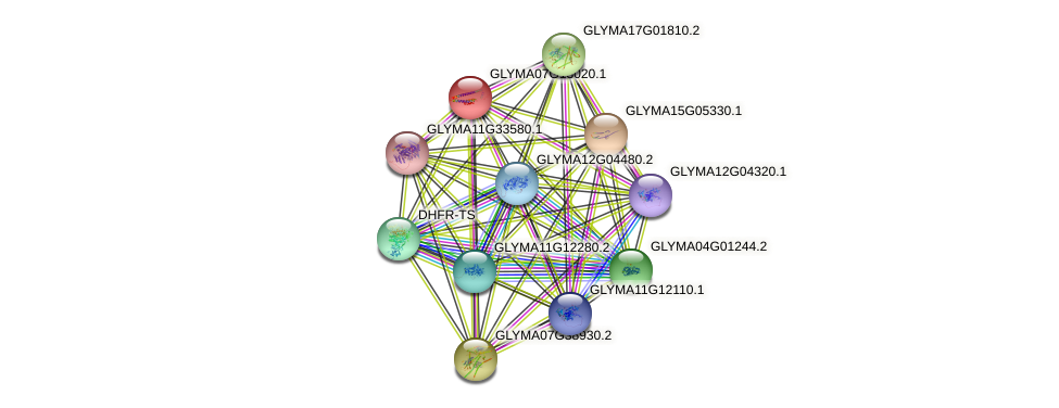 GLYMA07G13020.1 protein (Glycine max) - STRING interaction network