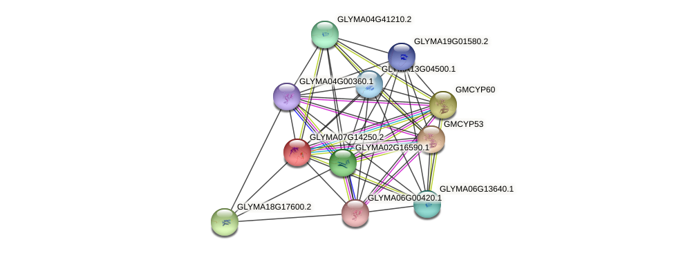 GLYMA07G14250.2 protein (Glycine max) - STRING interaction network