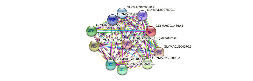 GLYMA07G14860.1 protein (Glycine max) - STRING interaction network