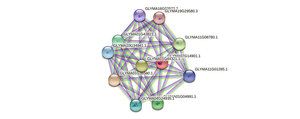 GLYMA07G14901.1 protein (Glycine max) - STRING interaction network