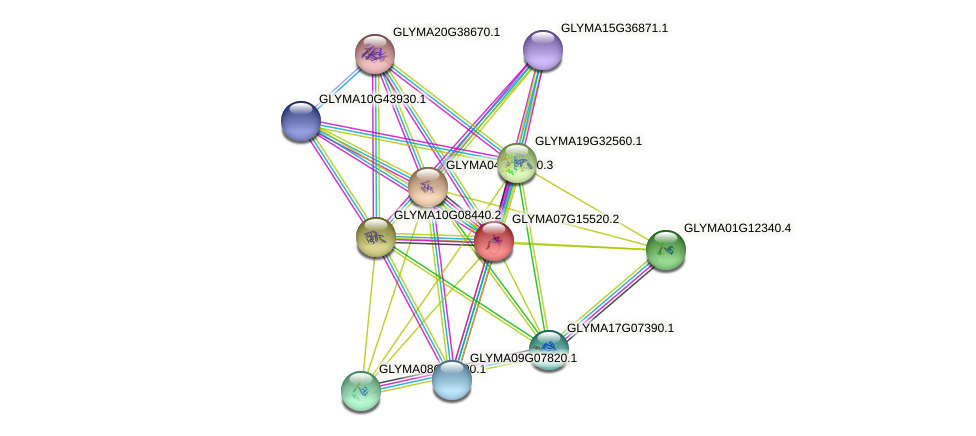 GLYMA07G15520.2 protein (Glycine max) - STRING interaction network
