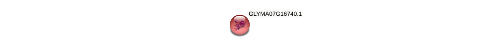 GLYMA07G16740.1 protein (Glycine max) - STRING interaction network