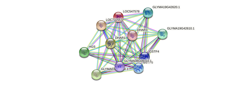 LOC547578 protein (Glycine max) - STRING interaction network