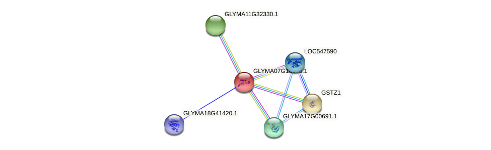 GLYMA07G16876.1 protein (Glycine max) - STRING interaction network