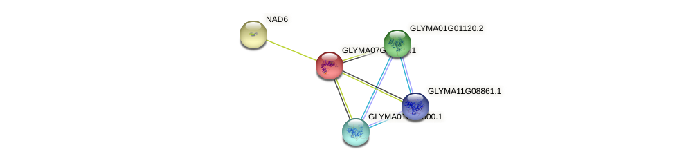 GLYMA07G17870.1 protein (Glycine max) - STRING interaction network