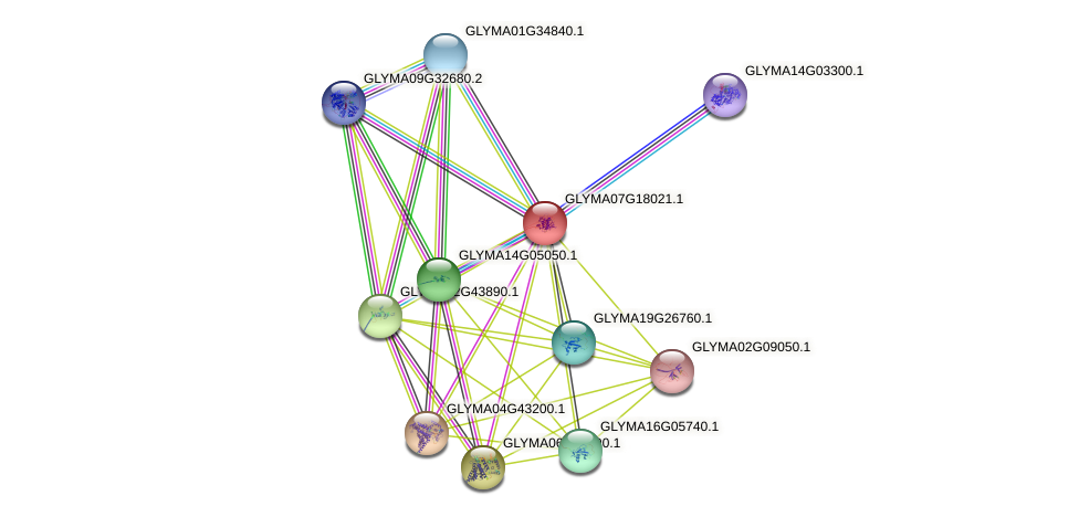 GLYMA07G18021.1 protein (Glycine max) - STRING interaction network