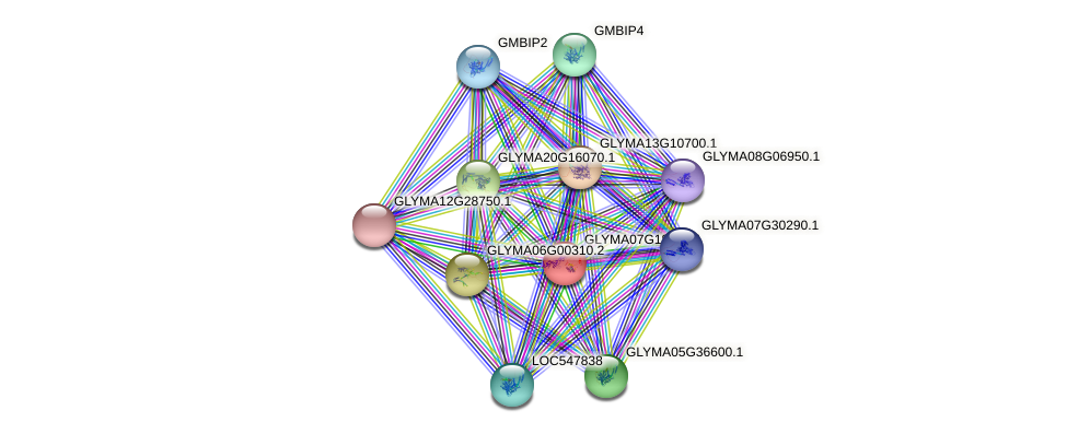 GLYMA07G18260.1 protein (Glycine max) - STRING interaction network