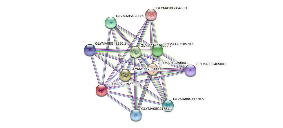 GLYMA07G19271.1 protein (Glycine max) - STRING interaction network
