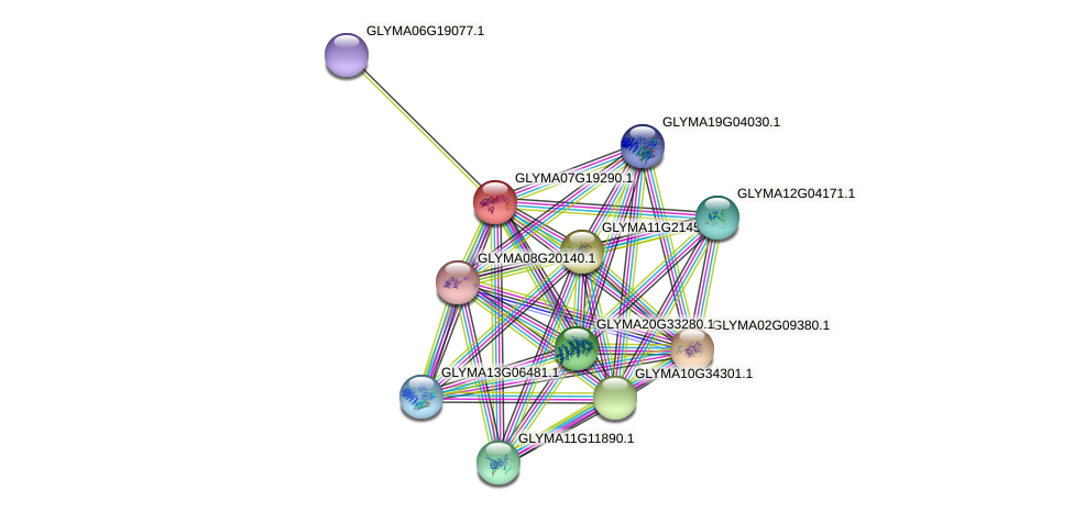 GLYMA07G19290.1 protein (Glycine max) - STRING interaction network