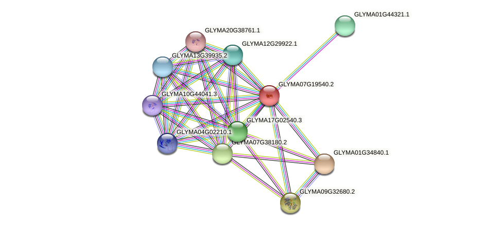 GLYMA07G19540.2 protein (Glycine max) - STRING interaction network