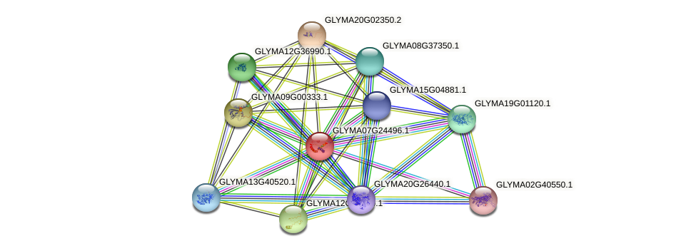GLYMA07G24496.1 protein (Glycine max) - STRING interaction network