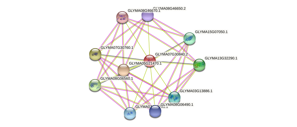 GLYMA07G30840.2 protein (Glycine max) - STRING interaction network