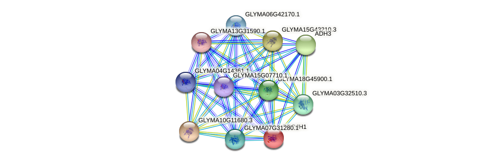 PPOJH1 protein (Glycine max) - STRING interaction network