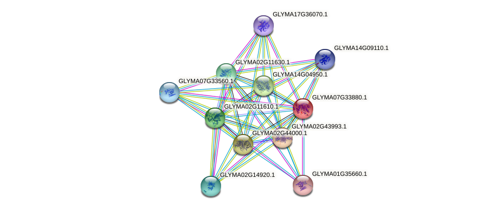 GLYMA07G33880.1 protein (Glycine max) - STRING interaction network