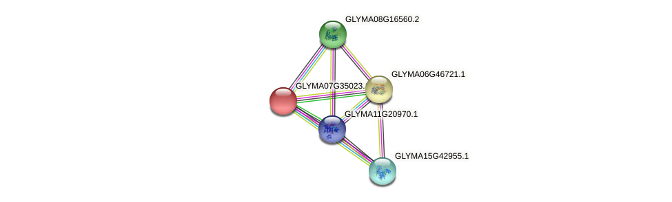 GLYMA07G35023.1 protein (Glycine max) - STRING interaction network