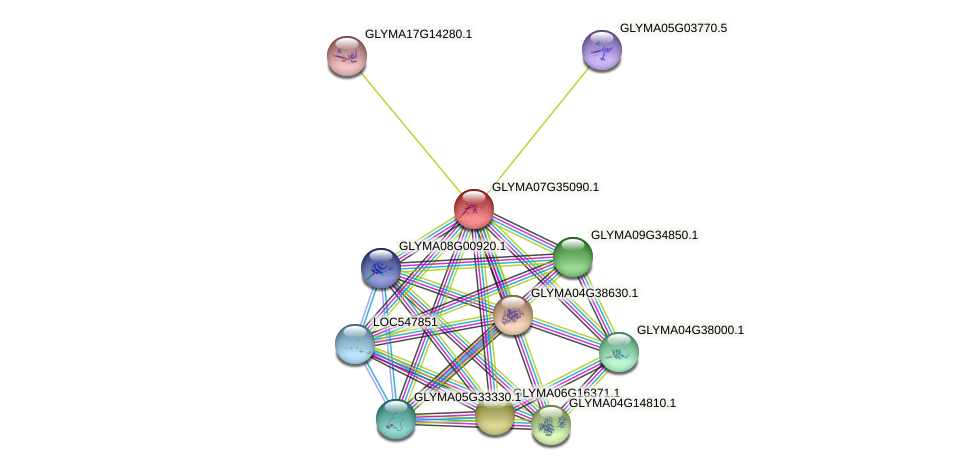 GLYMA07G35090.1 protein (Glycine max) - STRING interaction network