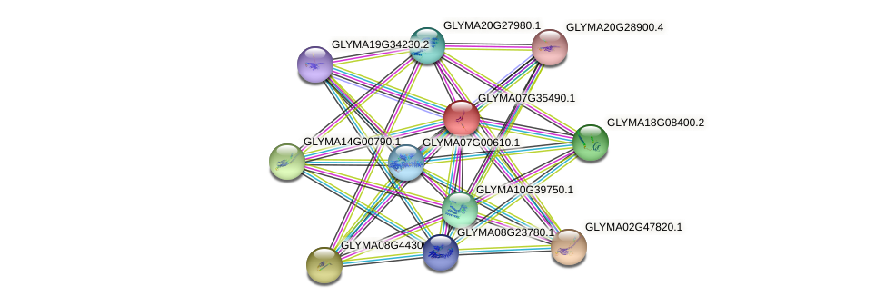 GLYMA07G35490.1 protein (Glycine max) - STRING interaction network