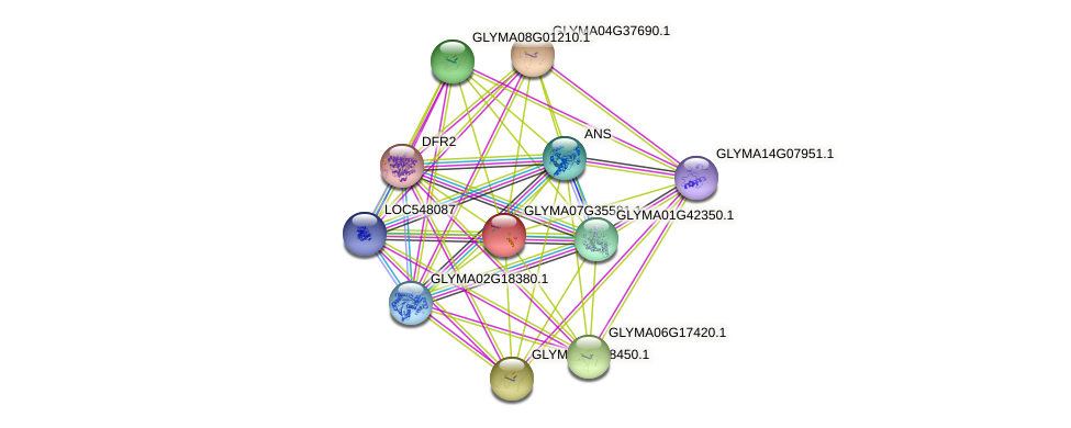 GLYMA07G35581.1 protein (Glycine max) - STRING interaction network