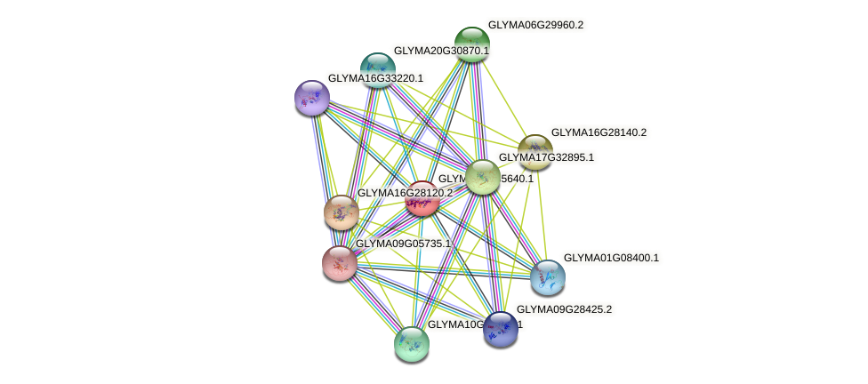 GLYMA07G35640.1 protein (Glycine max) - STRING interaction network