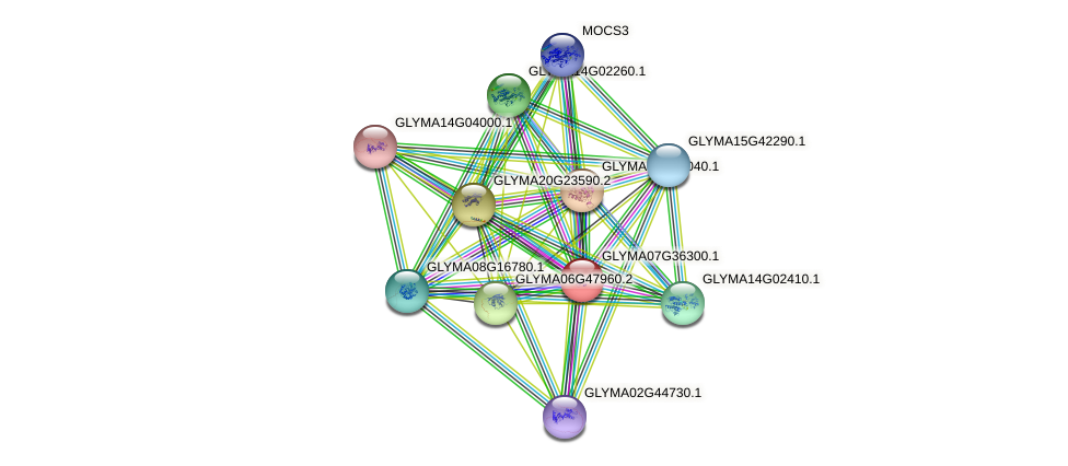 GLYMA07G36300.1 protein (Glycine max) - STRING interaction network