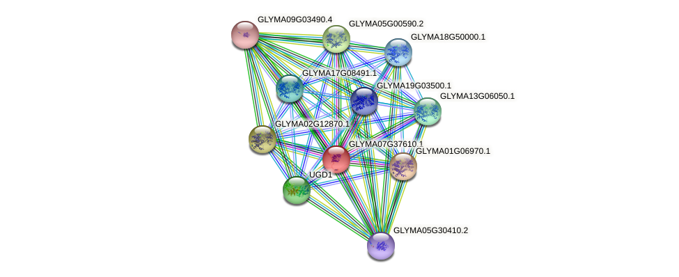 GLYMA07G37610.1 protein (Glycine max) - STRING interaction network