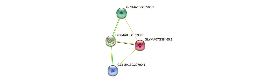 GLYMA07G38465.1 protein (Glycine max) - STRING interaction network