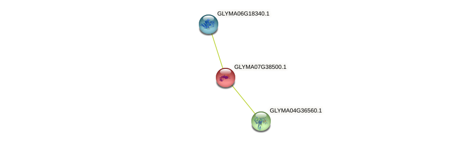 GLYMA07G38500.1 protein (Glycine max) - STRING interaction network